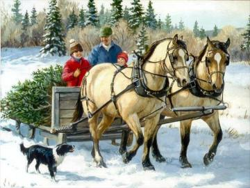 Immagine invernale - immagine invernale, albero di Natale in arrivo, Natale appena fuori