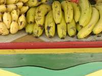 Ямайка. Сергия за плодове.