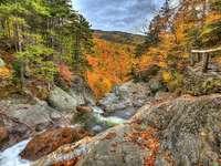 Podzim v horách.