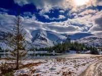 Зимна красота