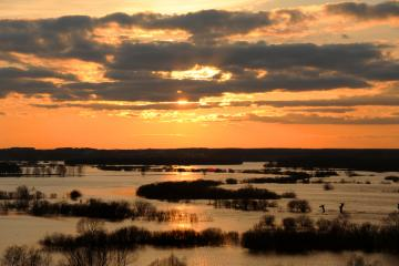 "The floodpits of the Narew Riv - The photograph comes from the site ""polskiekrajobrazy.pl"". Author: Szymon Narożniak"