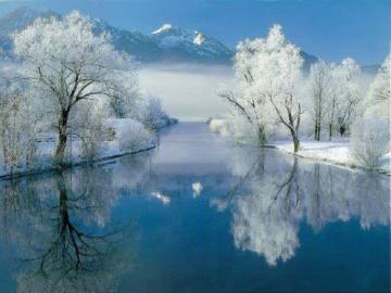 Zimowy krajobraz. - Oszronione drzewa nad rzeką.