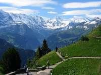 Alpes bernoises.