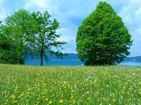 wiosenny widok na jezioro