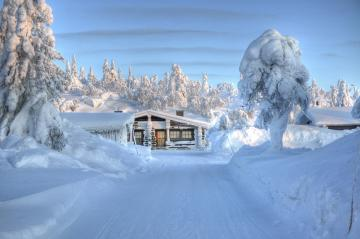 Beautiful winter scenery. - And we dream about Christmas this winter.