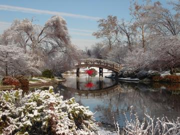 Winter in the park. - Something there under the bridge of red. I just do not know what.