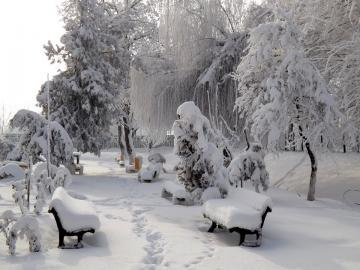 Winter in the park. - Oh, I remember such winters in Skaryszewski Park in Warsaw.