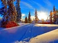 Lever du soleil - Lever du soleil d'hiver.