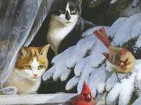Deux chats et deux oiseaux. - Animaux: les chats. Oiseaux: cardinaux.