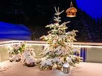 Terrasse d'hiver. - Sapin de Noël sur la terrasse d'hiver.