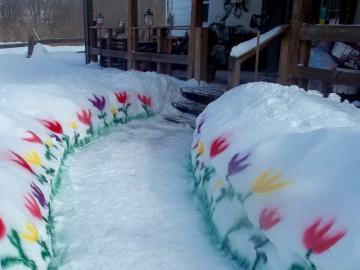 Зимна градина. - И можете да имате цветя през зимата. И със сигурност в К