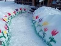 Jardin d'hiver. - Eh bien, vous pouvez avoir des fleurs en hiver. Et certainement au Canada.