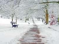Hiver dans le parc. - Ce serait bien pour un tel parc enneigé d'aller déjeuner après les vacances de Noël.