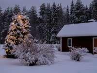 La magie de Noël à la campagne - Et c'est ce dont je rêve. Silence. Silence. Encore une fois silence.
