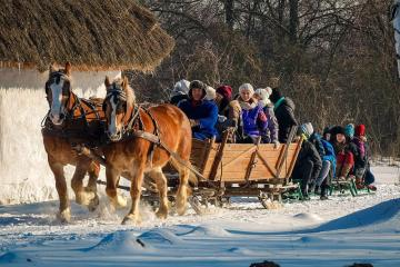 Kulig in Mazovia. - And you can see why the last sledges are the coolest. It is difficult to keep them on bends. But thi