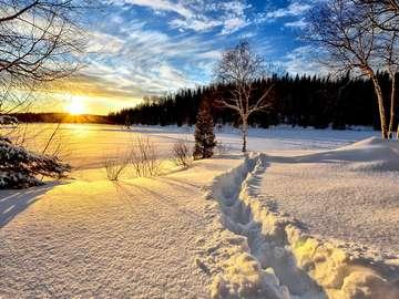 Зимен пейзаж. - Зимен залез.
