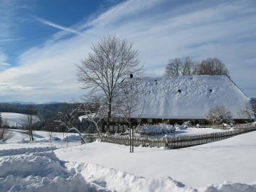 Зимен пейзаж. - Зимен пейзаж на Черната гора.