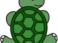 turtle 123 - very beautiful, very good, very cute