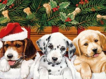 I puzzle di Karolina - Puzzle di Natale per bambini