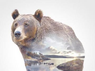 Krajobraz z niedźwiedziem. - Krajobraz z niedźwiedziem.