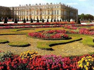 Giardini di Versailles. - Fiori. Giardini di Versailles.