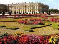 Jardins de Versailles. - Fleurs. Jardins de Versailles.