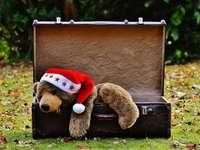 Joyeux Noël paresseux! - Et vous, Jolu et Bogno, en particulier. Bonté!