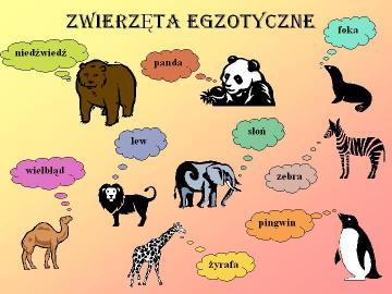 Egzotyczne zwierzęta. - Dla dzieci. Egzotyczne zwierzęta.