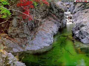 strumyczek - strumyczek, potok, skałki,