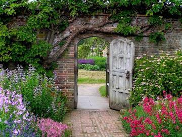W tajemniczym ogrodzie. - W tajemniczym ogrodzie.