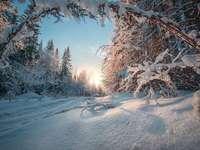 Winter in the Urals. - Landscape. Russia. Winter in the Urals.