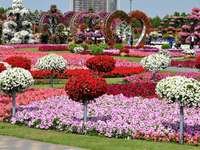 Dubai, de bloementuin