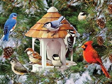 Dokarmiajmy ptaki zimą. - Dokarmiajmy ptaki zimą.