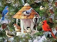 Laten we de vogels in de winter voeren.