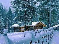 πλήρως χειμώνα - πλήρως χειμώνα, χιονισμένο φράχτη, σπίτι, δέντρα