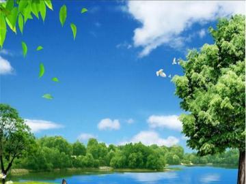 Wiosenny obrazek - Piękny wiosenny obrazek