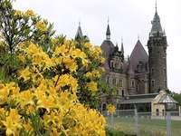 Virágok a háttérben a vár. -  Kastély Mosznában.