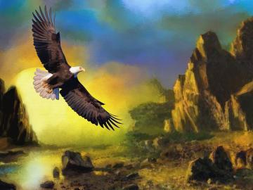 Lot orła. - Lot orła na swobodzie.