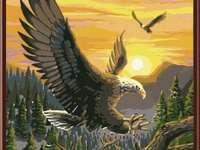 Vuelo águila 2.