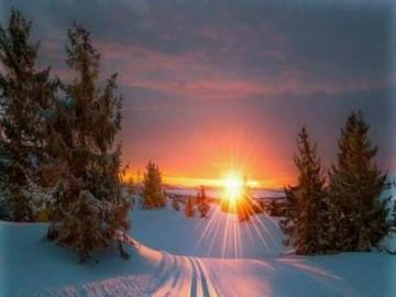 Winterstrasse - Winterzauber in der Sonne