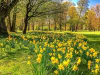 Tavaszi táj.