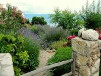 Em um jardim mediterrâneo.