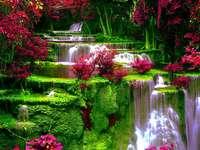 Virágok a vízesés mellett.