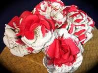 Szokatlan rózsák, fehér rózsák