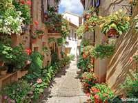 picturesque street - Picturesque alley