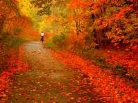 Autumn puzzle.