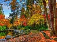 Fialový podzim - Krajiny. Fialový podzim