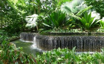 Singapore garden - Singapore - one of the most beautiful gardens