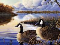 Autumn at the lake. - Landscapes. Autumn at the lake.