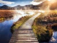 podul prin mlaștini - podul prin mlaștini, peisaj